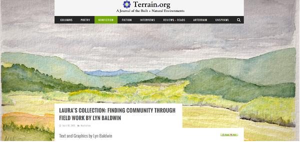 terrain_image